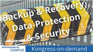 Ab 1. Februar: Umfangreiche Beitragssammlung zu Backup & Recovery, Data-Protection & Security